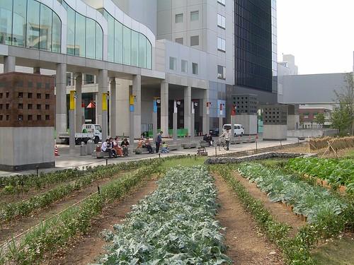 Huertos debajo del Umeda Sky Building de Osaka