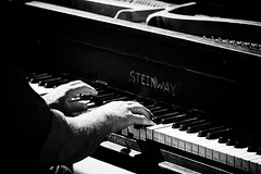 Steinway (Brian Auer) Tags: california venice people blackandwhite bw musician music man male beach outside person blackwhite losangeles hands play unitedstates pacific outdoor sony performance piano naturallight instrument photowalk venicebeach perform grayscale performer steinway a700 sonya700 lavenice0308 photowalking030808