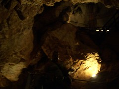 Looking Down (hamlette2002) Tags: alex fieldtrip grandcanyoncaverns