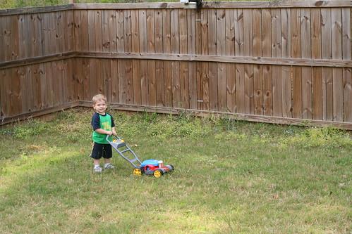 Walker mowing the grass