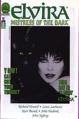 Elvira, Mistress of the Dark #12 cover