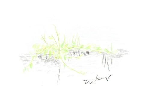11-grass on street