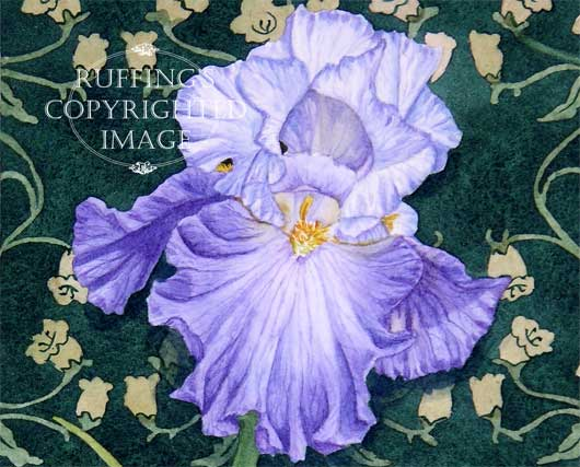 """""""Blue and White Iris on Green"""" ER31 by Elizabeth Ruffing"""