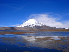 Volcan Parinacota (rwilly) Tags: naturaleza nature parinacota blueribbonwinner lagochungara parquenacionallauca supershot chungara aplusphoto naturesfines diamondclassphotographer naturewatcher excapture