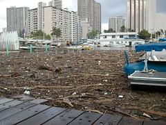 island trash