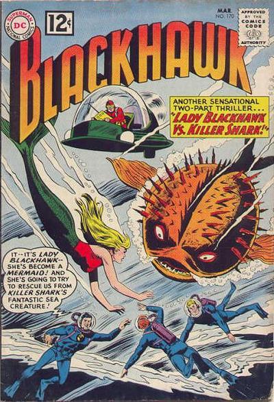 blackhawk170.jpg