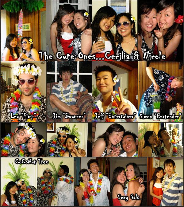 hawaiian party 2