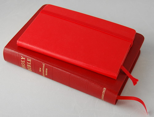 Red Moleskine with Pocket Reference ESV