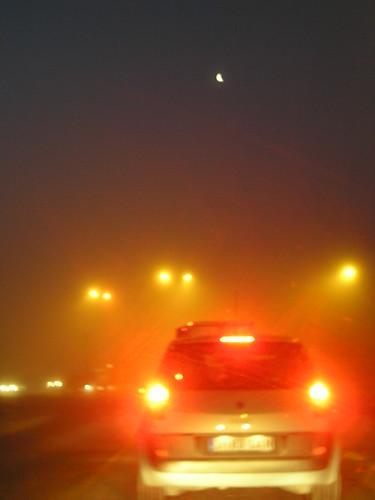 Entrando en la niebla