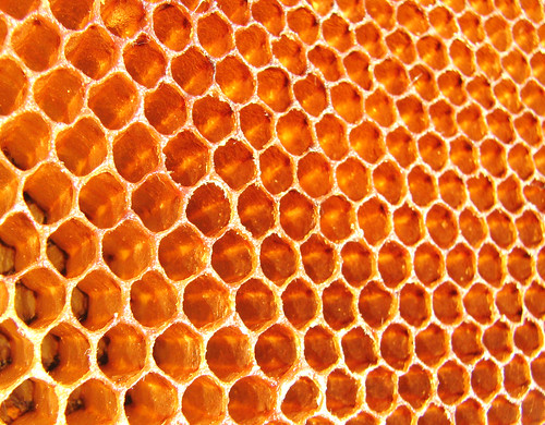 Honeycomb | Flickr - Photo Sharing!