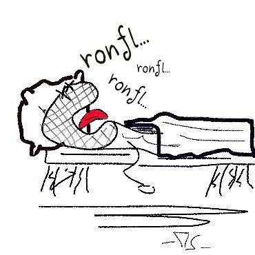 ronfl...