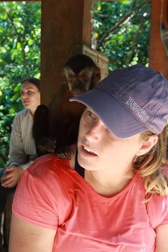 Monkey Pee I