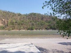 100_4761 (suzushun) Tags: india water river indian ganga ganges rishikesh