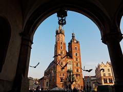 2017.02 - Kraków, Poland (rambles_pl) Tags: kraków krakow poland city oldtown church blue bluesky birds fly pigeon