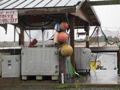 The rain picks up (mscheesecake) Tags: oregon portland shanty oregoncoast