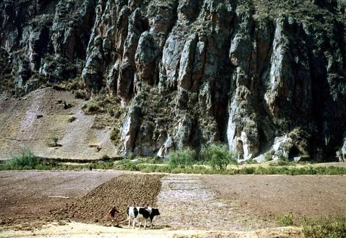 Campesino peruano