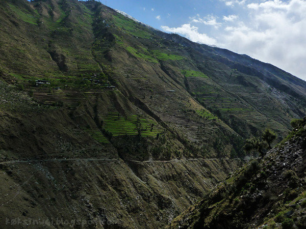 Bharmour Steppes