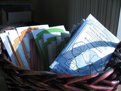 2007-10-26_seeds.jpg