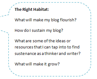 How to Grow a Blog - The Right Habitat