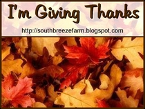 http://southbreezefarm.blogspot.com/2007/11/thankful-month.html