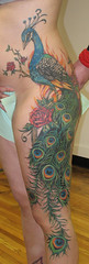 peackock4 (Mez Love) Tags: flowers roses bird side peacock tattoos deanna largetattoo mezlove taintedheartscustom