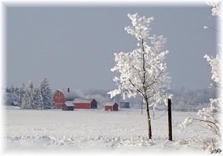 Alberta Country........