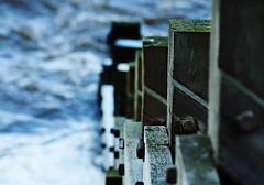Groyne Line-up (ElWanderer) Tags: wood uk sea england texture water coast waves norfolk grain shoreline wave shore groyne sheringham shallowdepthoffield shallowdof clearpicturestyle canonef200mmf28liiusm