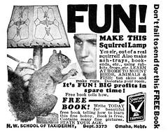 squirrel_lamp_1936 (Al Q) Tags: lamp squirrel taxidermy