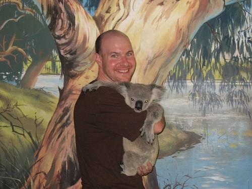 Cuddling a Koala Bear