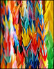 Paper Cranes for Peace in Hiroshima (MrUllmi) Tags: color japan catchycolors topv333 origami colorful topc50 hiroshima cranes papercrane sadako papercranes colourartaward artlegacy colourartawards colorsinourworld