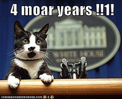 4 moar years !!1! ((     )) Tags: cat funny lol can has cheezburger lolcats lolcode