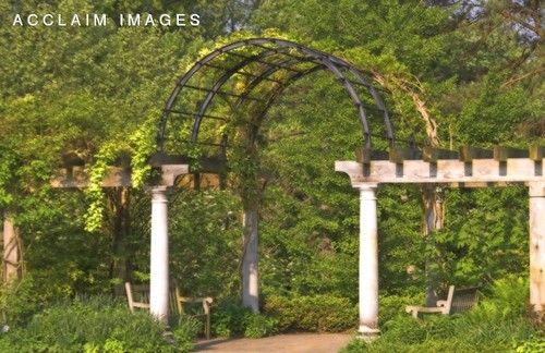 Stock Photo of a Vine Covered Arch in Ault Park, Cincinnati, OH