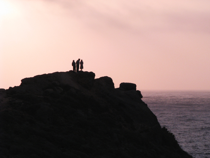 Point Lobos silhouette