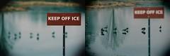 Keep Off Ice, Morton Arboretum. (EOS) (Mega-Magpie) Tags: canon eos 60d nature wildlife geese goose sign keep off ice the morton arboretum lisle dupage il illinois usa america outdoor outdoors