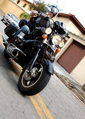 Heavy Cyrcle (Pedro Pasquale) Tags: brazil brasil club chopper 1600 moto motorcycle custom clube ame amazonas fusca motoca customizada