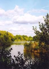 Fleet Pond