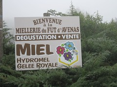 France 025