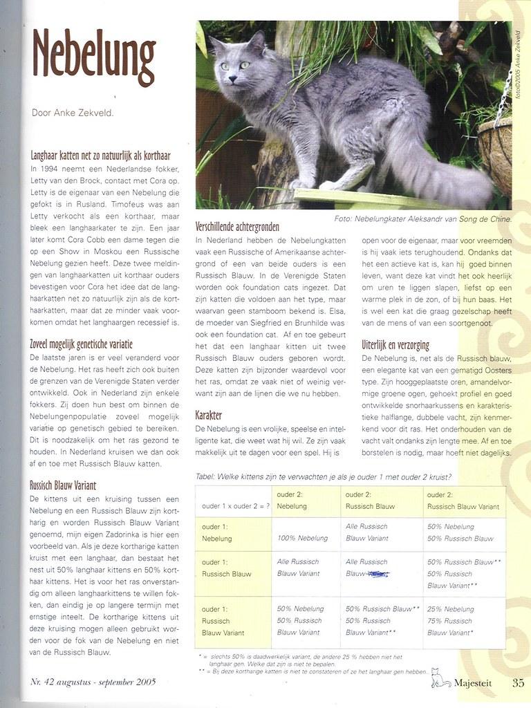 publications - Majesteit. cat magazine- The Netherlands- 200 1617433421_22e0e6a25f_b