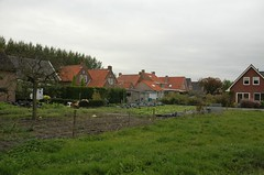 some old houses and their backyards with vegetables (trekamerikalover) Tags: hometown dutchhouses autumnfolliage