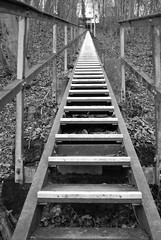Endlos in schwarz-weiss *1 (Gaston.ch) Tags: treppe kraftwerk rhein aufstieg endlos