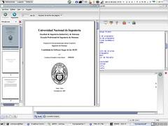 PDF Generado