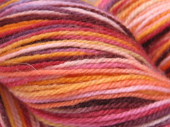 Swanky on Merino Neverending Sock Yarn - 4 oz (Spiffy Knits)