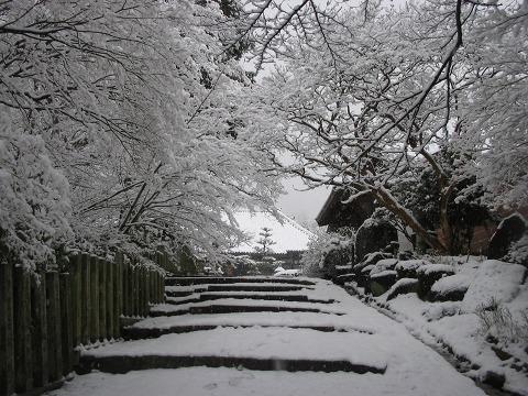 当麻寺(雪景色)-11