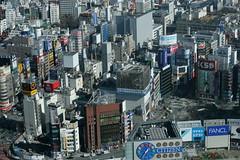shinjuku from toto (with notes) (cjw333) Tags: building nova japan skyline tokyo shinjuku 50mm14 fromabove 東京 citizen toto mizuho taito fancl oio taitostation meganedrug gametaitostation メガネドラッグ