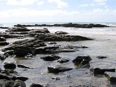 Wye River rockpools