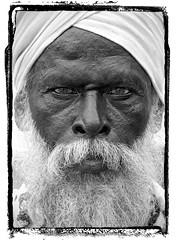 Portrait Of An Old Sadhu Wearing A Turban And A White Beard, Trichy, India (Eric Lafforgue) Tags: india face beard democracy eyes indian indie turban indi soe indien hind indi barbe sadhu inde hodu periyar southasia indland  hindistan indija   sadou ndia hindustan supershot   lafforgue   ericlafforgue hindia diamondclassphotographer flickrdiamond  bhrat  702864 indhiya bhratavarsha bhratadesha bharatadeshamu bhrrowtbaurshow  hndkastan