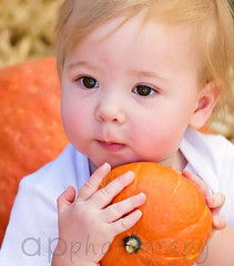 *orange crush* (echobelli) Tags: orange baby holiday halloween canon pumpkin sute 30d orangecrush ohhowilovemypumpkin youknowyouwanttosmile