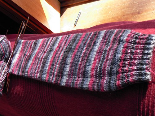 trekking 167 knee high sock WIP
