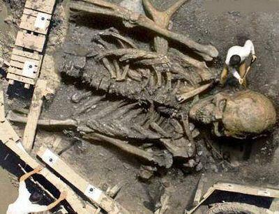 falso esqueleton