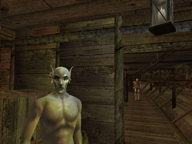 Morrowind Mods, take 68, or: Hiking simulator redux | Page 2